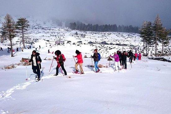 monte Etna Snowshoe Hike con...