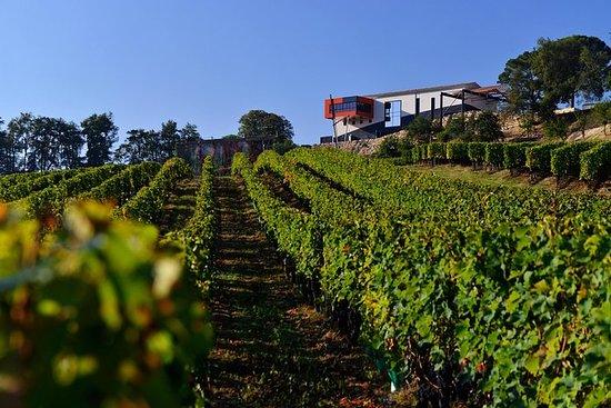 Saint-Emilion Wine Tour and Tastings...
