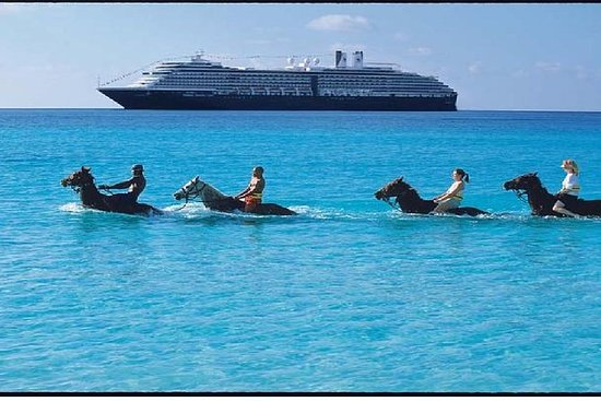 2-Hour Horse Back Ride And Swim from...