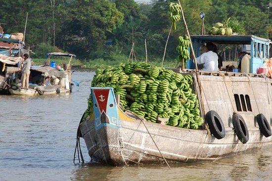 豪华湄公河三角洲全天与来自HCM市的午餐小团体