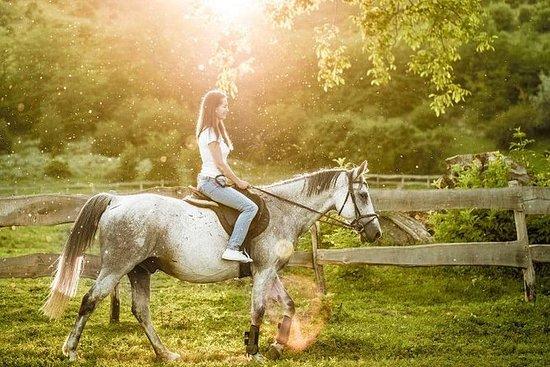 Halve dag Chianti paardrijden, lunch ...