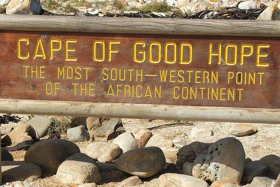 Cape of Good Hope Guided Dagtur fra...