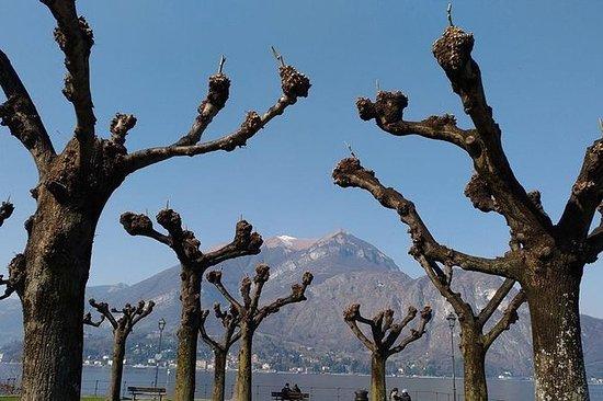 Essen und Wein Tour am Comer See