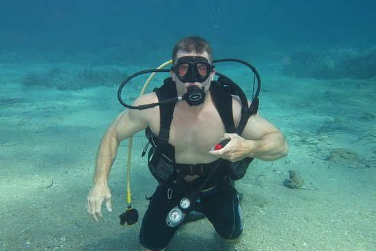 Discover scuba diving for beginners...