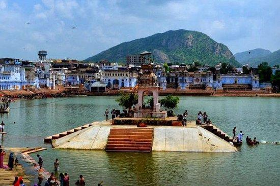 Privat dagsutflykt till Pushkar från ...