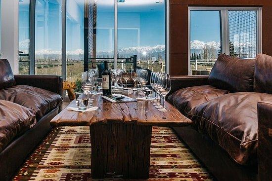 Excursión vinícola privada de día...