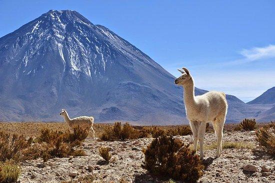 3 Days Tour Uyuni Salt Flats ending...