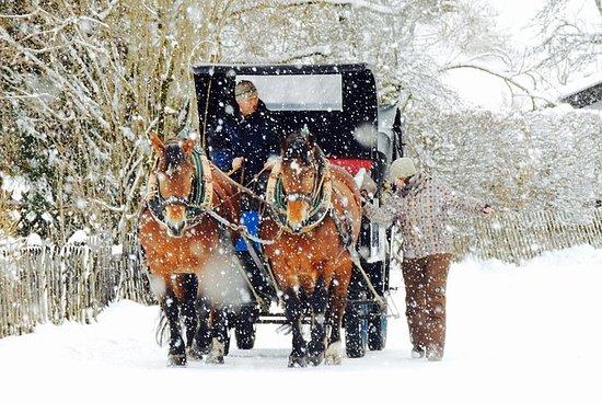 Tour en carruaje de invierno
