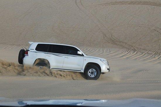 Safari dans le désert d'une journée...
