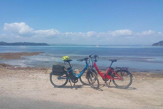 Waiheke Island e-Bike Tour Inkludert...