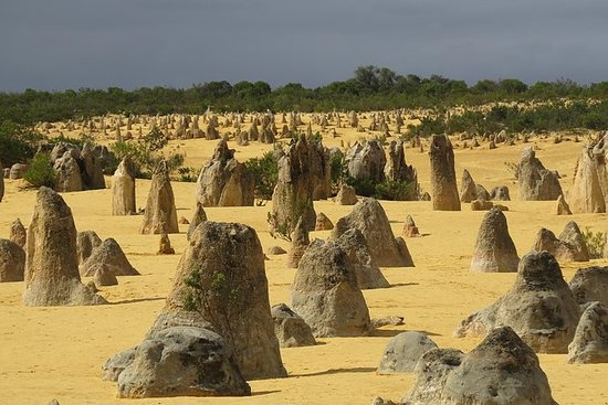 Pinnacles Desert Scenic Flight og...