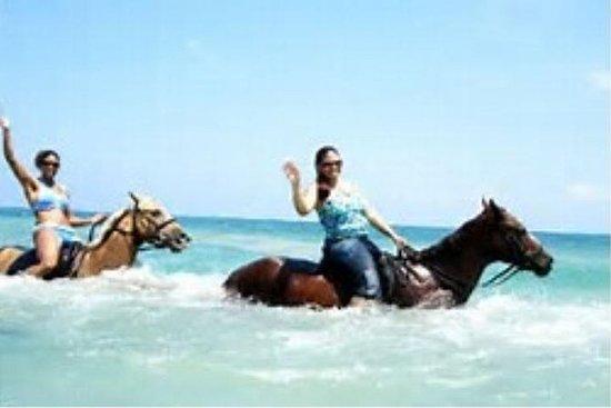 Heritage beach horseback riding