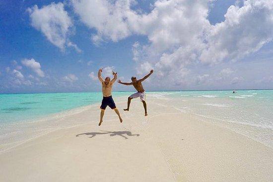 Sandbank Snorkeling and Sunset Cruise