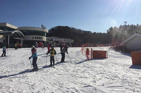 Full Day Ski Tour på Jisan Forest og...