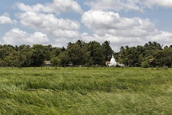私人旅游:Illukpalassa Village体验远足