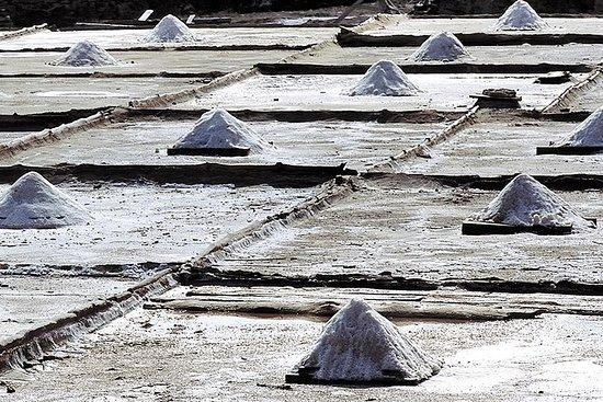 Découvrez la vallée du sel d'Añana et...