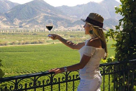 1 jour Wine Tour dans la région de...