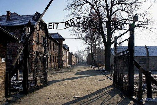 Auschwitz-Birkenau and Salt Mine Full...