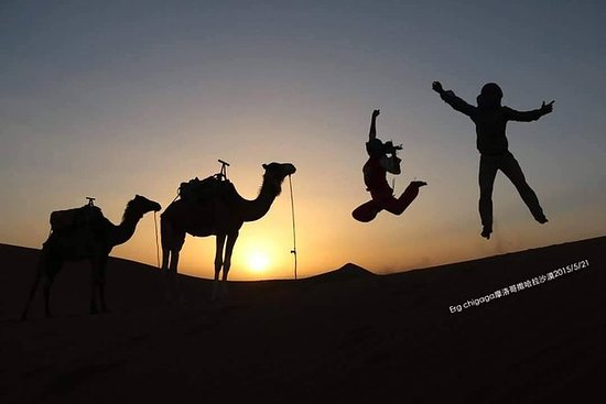 Día completo en el auténtico desierto...