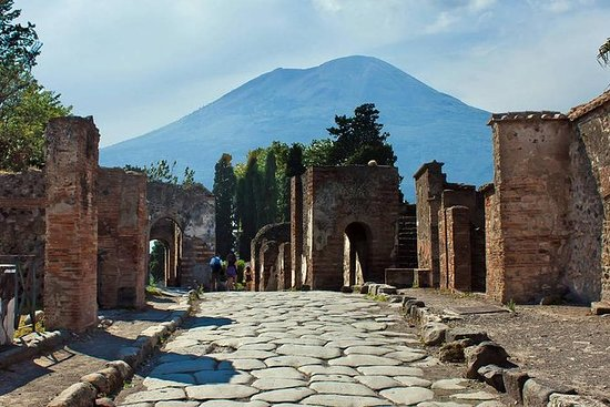 Pompeii and Vesuvius Guided Tour from...