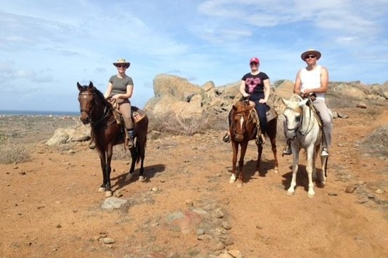 Aruba Private, 2 Hour Horseback...