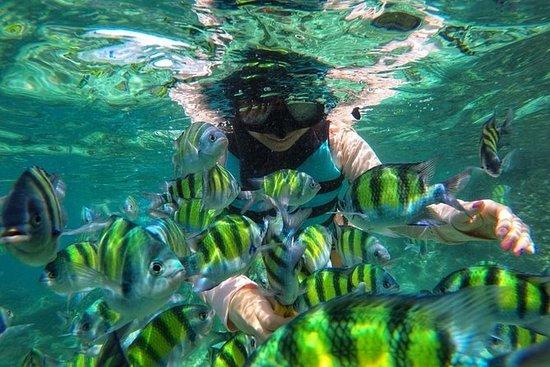 ピピ島とカイ島プーケットのサンライズデラックスツアー