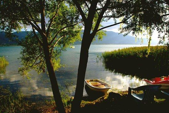 从伊斯坦布尔的私人绿色Sapanca一日游