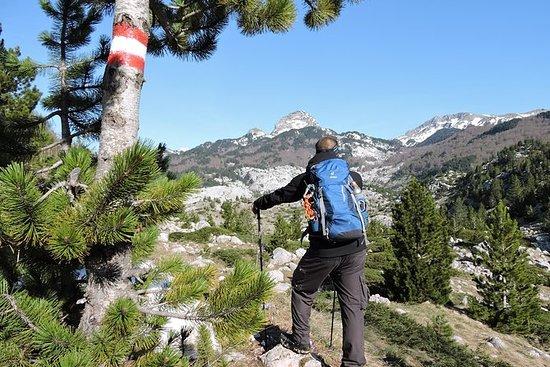 Visocica山へのハイキングツアー