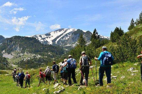 山Cvrsnicaへのハイキングツアー