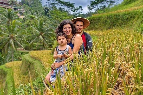 Tegalalang Rice Terrasse og Bamboo...