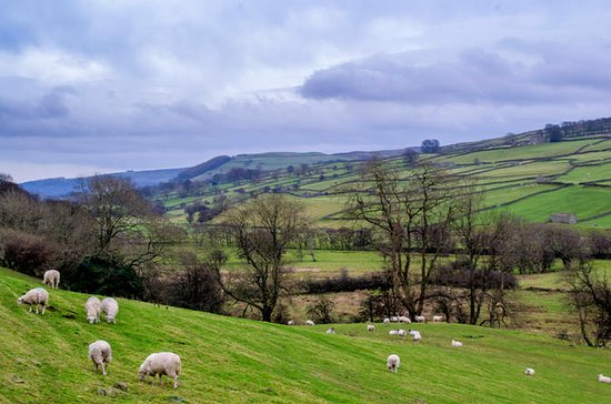 Full-Day Yorkshire Dales Tour from...