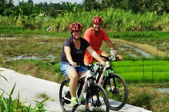 Electric bicycle tour in quaint South...