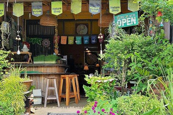 Tour du bien-être à Koh Samui