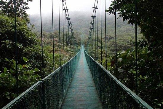 Dia inteiro para Monteverde de San Jose...