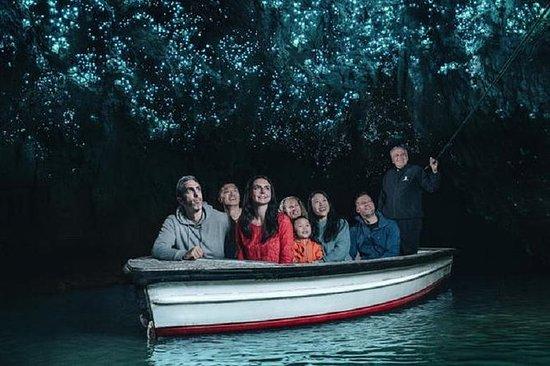 Tour privado de Waitomo Caves para...