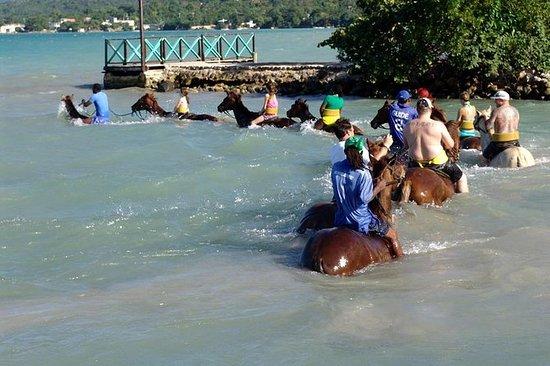 Passeio a cavalo e nadar no porto de...