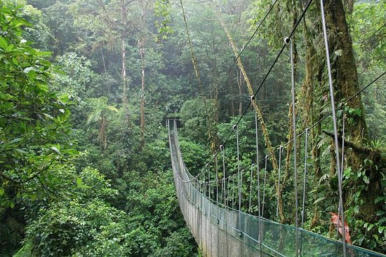 Full day hiking at Arenal Volcano and...