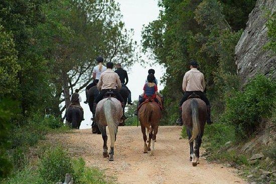 Grupo pequeño de equitación de...