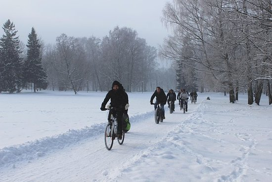 Tallinn Winter Bike Tour med Cafe...