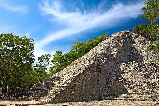 Tulum, Cobá y cenote desde Playa del...