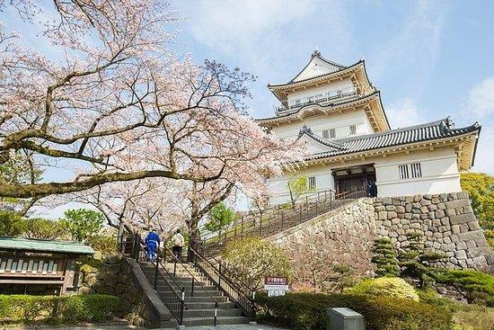 Visita histórica del castillo y...