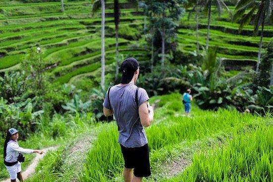 Ubud Tour With Rice Terrace...