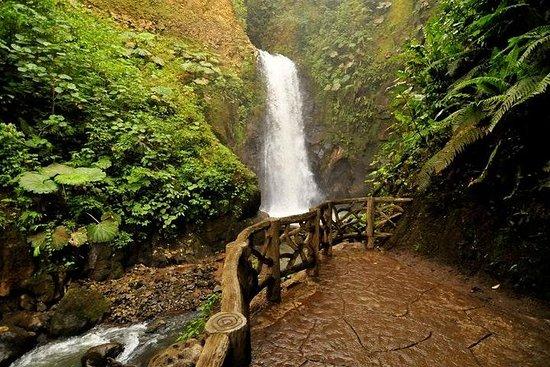 Los jardines de la cascada más el...
