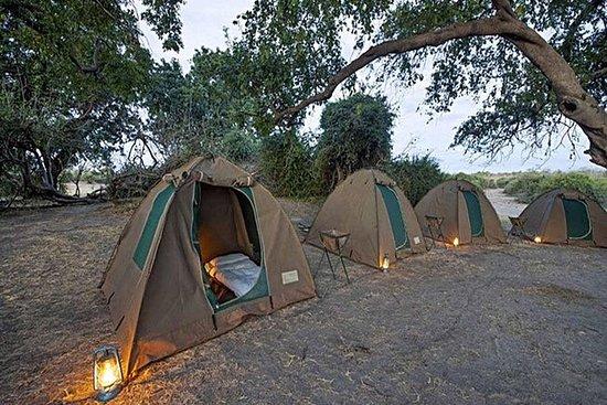 Chobe National Park Camping Safari De...