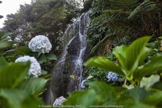 Nordeste, São Miguel, Açores, MiniVan...