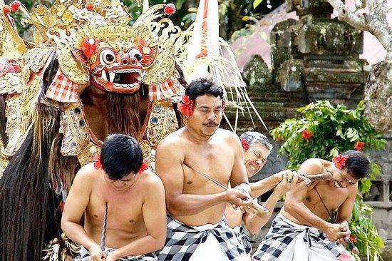 Lo mejor de Bali en un viaje de un día