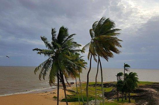 3 Guyanas Express