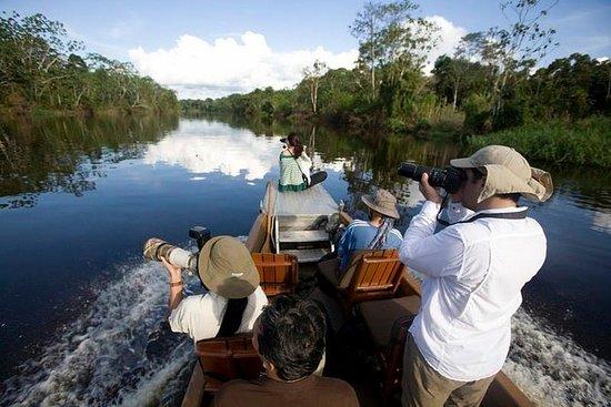 3-dagers Amazon-tur fra Iquitos