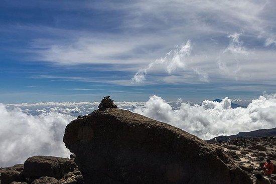 5 jours de randonnée au Kilimandjaro...