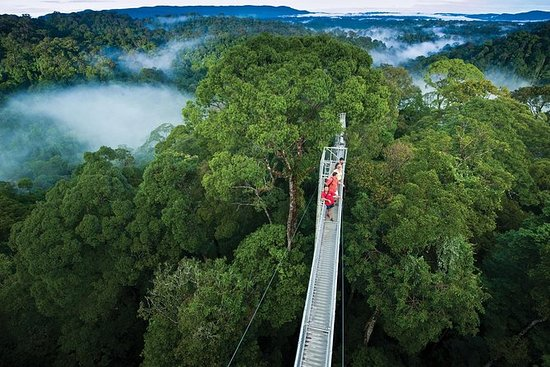Brunei Temburong Day Trip
